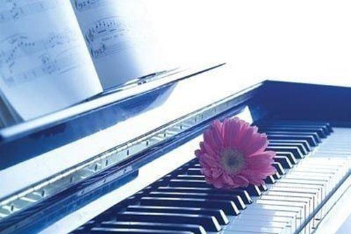 钢琴——启蒙 一对一 随到随学