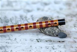竹笛——一对多 随到随学