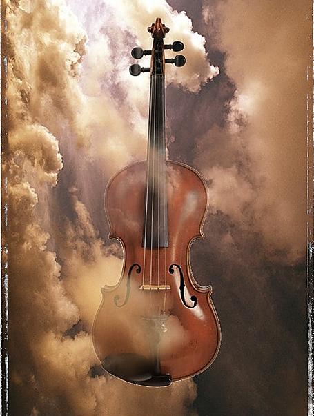 小提琴—— 一对一 随到随学