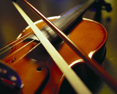 小提琴——中级 一对多 随到随学