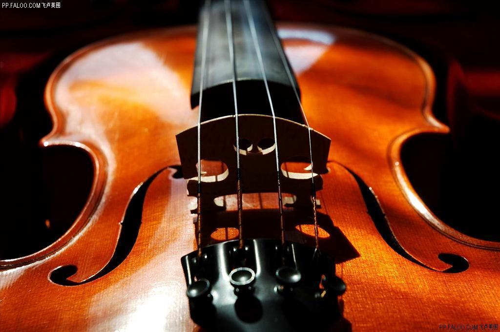 小提琴——高级 一对多 随带随学