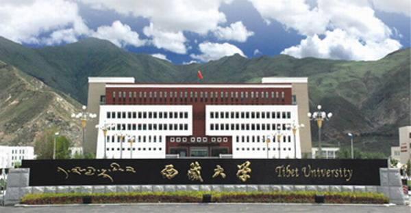 音乐校考培训:西藏大学2020年艺术类本科专业招生简章